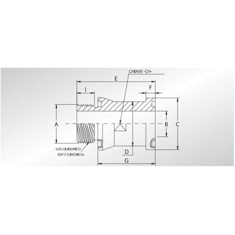 Adapter BSP z oringiem SFS