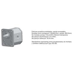 Pompa zębata grupa 3 śruby 128x98,5mm zamek 50,8mm