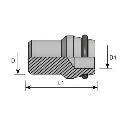 Nypel Metryczny/Spaw