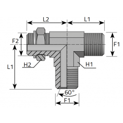 GZ z nakrętką BSPP/GZ BSPP/GZ BSPP Trójnik niesymetryczny