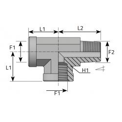 Trójnik niesymetryczny GW GZ NPT TFFN....MN.B