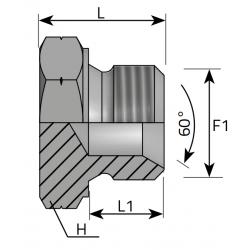 GZ Metryczny Śruba zaślepiająca stożek 60°