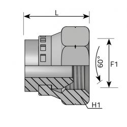 GW Metryczny Śruba zaślepiająca z nakrętką stożek 60°