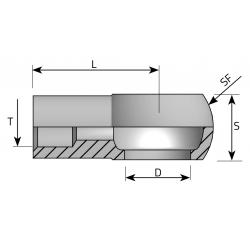 Śruba Banjo do spawania Metryczny AOSM